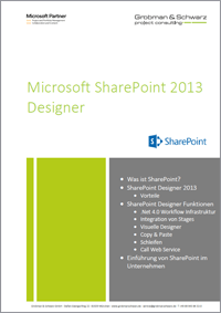 SharePoint Designer Deckblatt_kl