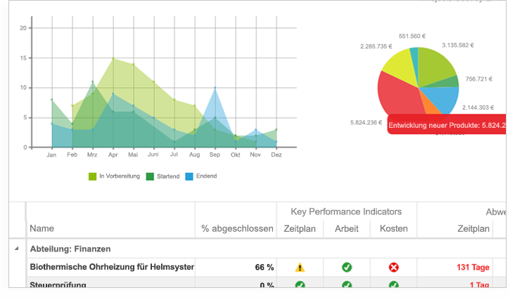 Projektmanagement mit MS Project | Portfolio Management