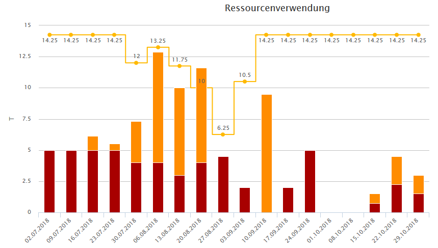 Projektmanagement mit MS Project | Ressourcenplanung
